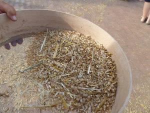2012 tamiso in festa 496